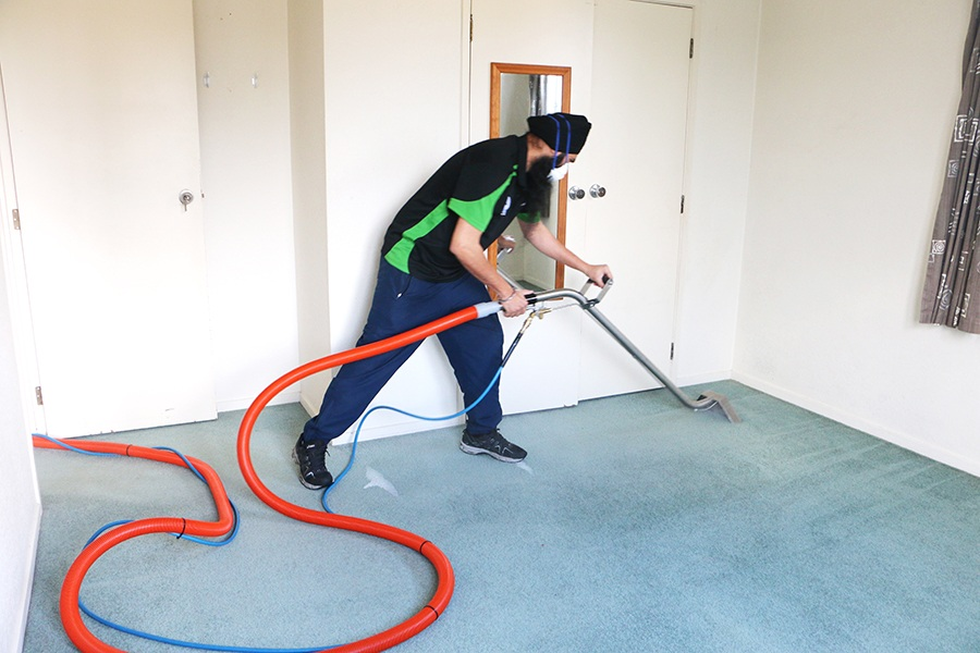Professional carpet cleaning service in Auckland