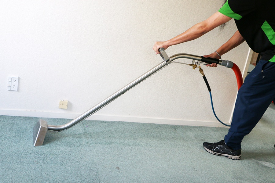 Professional carpet cleaning service Auckland